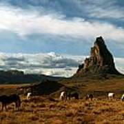 Navajo Horses At El Capitan Art Print