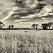 Nebraska Prairie One In Black And White Art Print