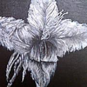 Negative Essence Art Print