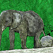 Nelly The Elephant Art Print