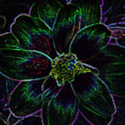 Neon Glow Art Print