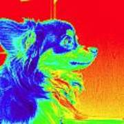 Neon Papillion Art Print