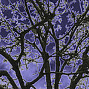 Neon Winter Tree Art Print