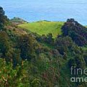 Nepenthe View At Big Sur In California Art Print