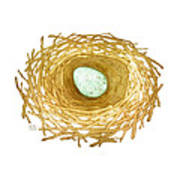 Nest And Egg Art Print