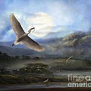 Nesting Egrets Art Print