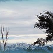 Nevada Blue Art Print