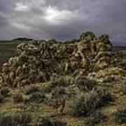 Nevada Desert Skies Art Print