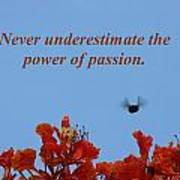 Never Underestimate The Power Of Passion Art Print