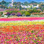 New Carlsbad Flower Fields Art Print