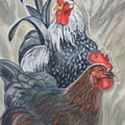 New Chick In Town Art Print