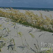 New Dunes On The Atlantic Art Print