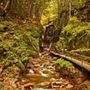 New England Waterfall Gorge Art Print
