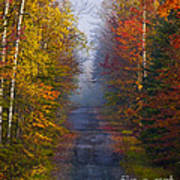 New Hampshire Back Road Art Print