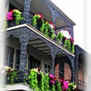 New Orleans Porches Art Print
