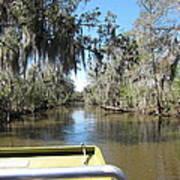 New Orleans - Swamp Boat Ride - 1212123 Art Print