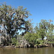 New Orleans - Swamp Boat Ride - 1212132 Art Print