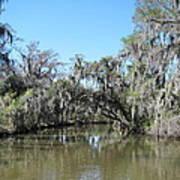 New Orleans - Swamp Boat Ride - 1212133 Art Print