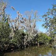 New Orleans - Swamp Boat Ride - 1212146 Art Print