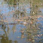 New Orleans - Swamp Boat Ride - 121262 Art Print