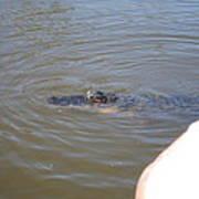 New Orleans - Swamp Boat Ride - 121277 Art Print
