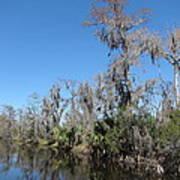 New Orleans - Swamp Boat Ride - 121295 Art Print