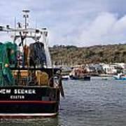 New Seeker - Lyme Regis Art Print