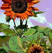 New Sunflowers Art Print by Annette Allman
