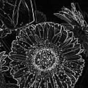 New Years Eve Flower Art Print