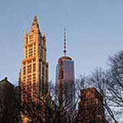 New York City Skyline Through The Trees Art Print