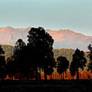 New Zealand Silhouette Art Print