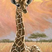 Newborn Giraffe Art Print