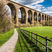 Newbridge Rail Viaduct Art Print