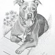 Newman Art Print