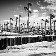 Newport Beach Dory Fishing Fleet Black And White Picture Art Print by Paul Velgos