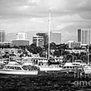Newport Beach Skyline Black And White Picture Art Print by Paul Velgos