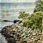 Newport Cliff Walk Art Print