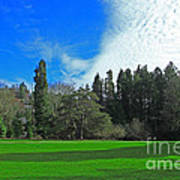 Nice Day In The Park Art Print