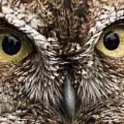 Nice Eyes Art Print