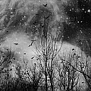 Burst Of The Night Flight Art Print
