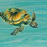 Nik's Turtle Print by Emily Brantley