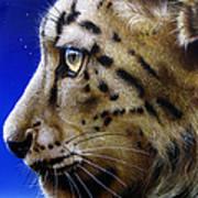 Nina The Snow Leopard Art Print