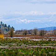 Nisqually Delta Of The Nisqually National Wildlife Refuge Art Print