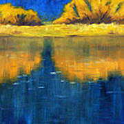 Nisqually Reflection Art Print by Nancy Merkle