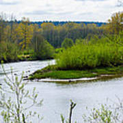 Nisqually River From The Nisqually National Wildlife Refuge Art Print