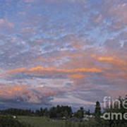 Nisqually Valley Sunset Art Print