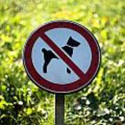 No Dogs Allowed Sign Art Print