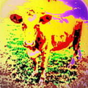 No Mercy For The Cow, They Say, But Why Not  Art Print