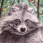 Stop Fur Trade  Art Print