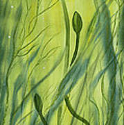 No Mud No Lotus Art Print
